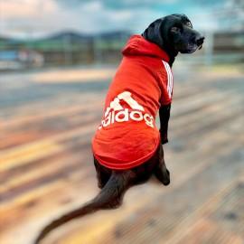 Adidog Red Hoodie Kapşonlu Sweatshirt Orta ve Büyük Köpekler İçin