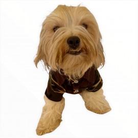 Askeri Polo Yaka Tişört Köpek Kıyafeti Köpek Elbisesi