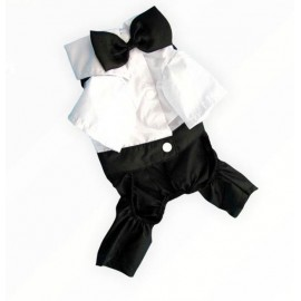 Tuxedo Smokin Kedi Kıyafeti Damatlık