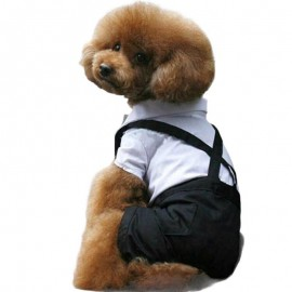Tuxedo Smokin Köpek Kıyafeti Damatlık