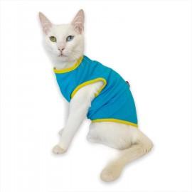Duo Rainbow Atlet Kedi Kıyafeti Kedi Elbisesi