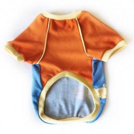 Fishy Sweatshirt Kedi Süeteri Kedi Kıyafeti