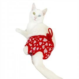 Floating Hearts Kemique's Secret Kedi İç Çamaşırı  Regl Külot  Don