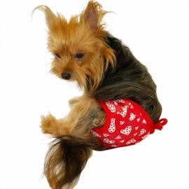 Floating Hearts Kemique's Secret Köpek İç Çamaşırı  REgl Külot  DON