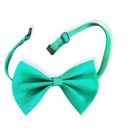 Green Ally Kedi Papyonu