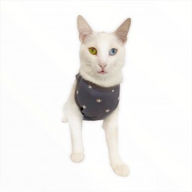Grey Star ATLET  by Kemique  Kedi Kıyafeti - Kedi Elbisesi