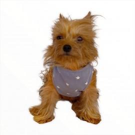 Grey Star by Kemique - Köpek Kıyafeti - Köpek Atlet