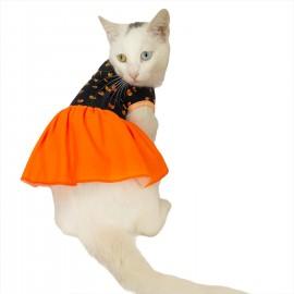 Hearts Orange Kedi Elbisesi Kedi Kıyafeti