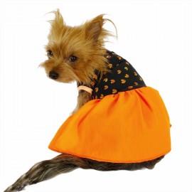 Hearts Orange Yellow Köpek Elbisesi Köpek Kıyafeti