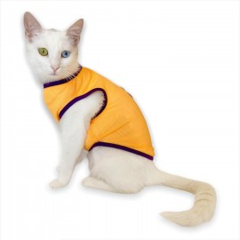 Lakers Atlet by Kemique Kedi Kıyafeti Kedi Elbise