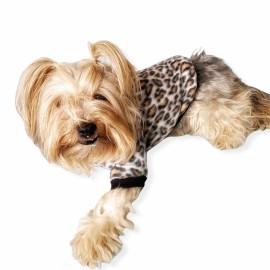Leopar Softie Sweat Köpek Kıyafeti