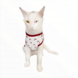 Mini Rainbows ATLET  by Kemique  Kedi Kıyafeti - Kedi Elbisesi