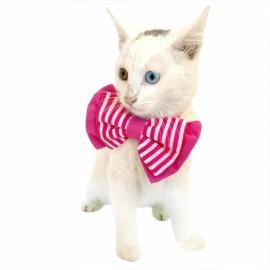 Pembe Çizgili Kedi Papyonu