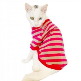 Pinky Grey Stripe Oval Yaka Tişört Kedi Kıyafeti Kedi Elbisesi
