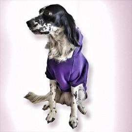 Purple Butterfly Kapşonlu Sweatshirt Orta ve Büyük Irklar İçin
