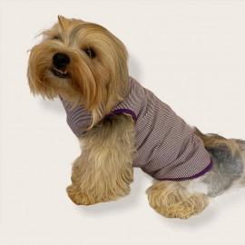 Purple Stripe by Kemique  Köpek Kıyafeti Köpek Elbise