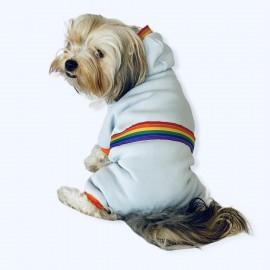 Rainbow Blue Köpek Tulumu Köpek Kıyafeti