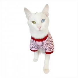 Red Stripes Mover Oval Yaka Tişört Kedi Kıyafeti Kedi Elbisesi