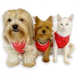 Red World by Kemique - Köpek Kıyafeti - Köpek Atlet