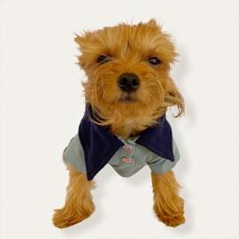 RL Grey Red Polo Yaka Tişört Köpek Kıyafeti Köpek Elbisesi