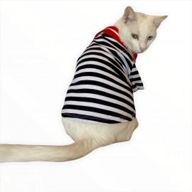 Siyah Beyaz Çizgili Kırmızı Polo Yaka Tişört Kedi Kıyafeti  Kedi Elbisesi