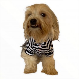 Siyah Beyaz Çizgili Polo Yaka Tişört Köpek Kıyafeti Köpek Elbisesi