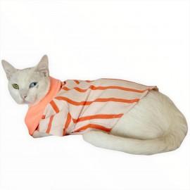 Somon Polo Yaka Tişört Kedi Kıyafeti  Kedi Elbisesi