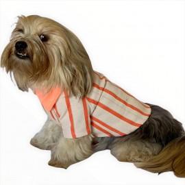 Somon Polo Yaka Tişört Köpek Kıyafeti Köpek Elbisesi