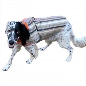 Stripe Orange Köpek Ceketi, Orta ve Büyük ırklar için