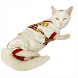 Teddy Red Penye Tulum Kedi Tulumu Kedi Elbisesi
