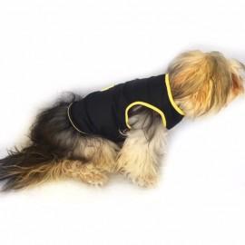 Yellow Bee Black Atlet Köpek Kıyafeti  Köpek Elbisesi