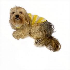 Yellow White  Atlet by Kemique  Köpek Kıyafeti  Köpek Elbise